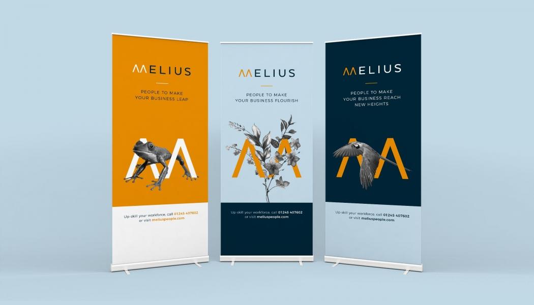 Image 5 Tips Dalam Merancang Desain Banner Gulung Untuk Bisnis Anda�